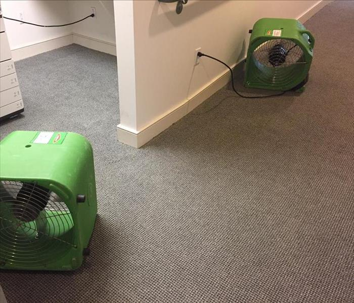 Water Damage to Carpet After