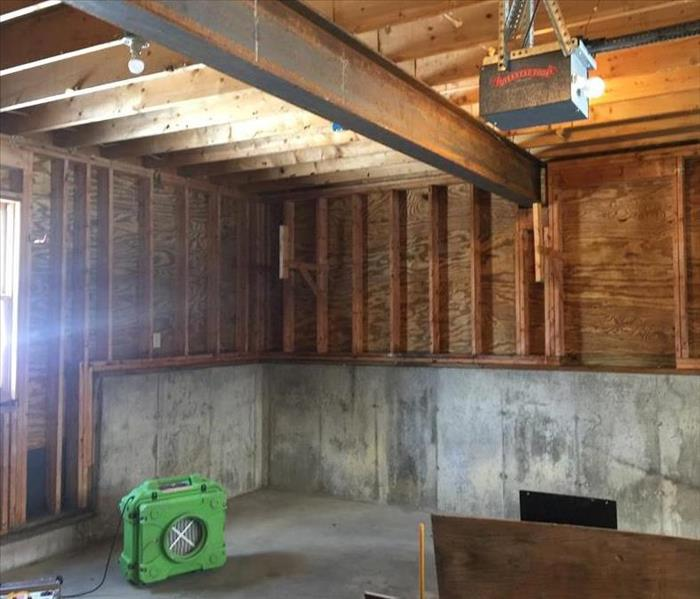 Mold Remediation in Garage After