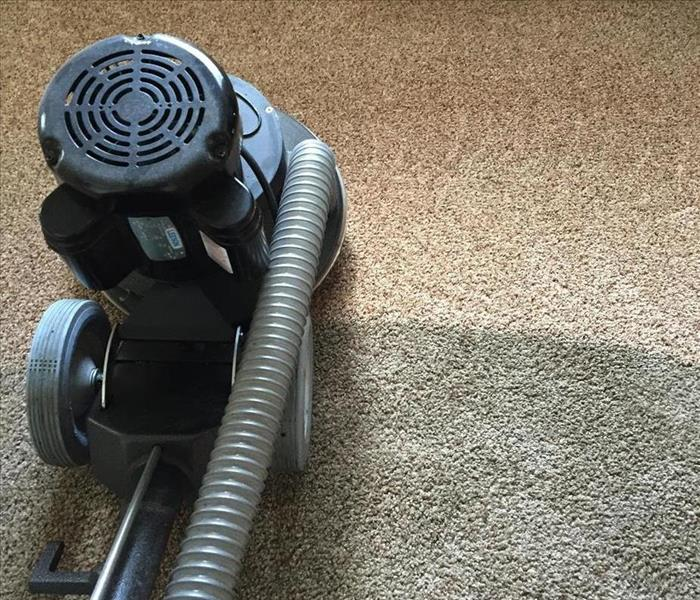 Cleaning Top Reasons to Have Your Carpets Professionally Cleaned
