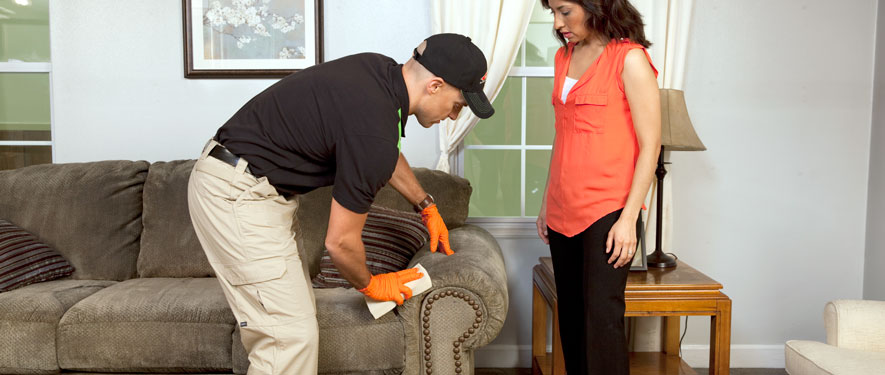 Stowe, VT carpet upholstery cleaning